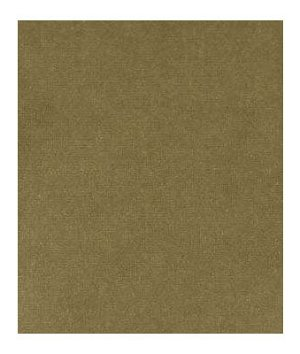 Beacon Hill Luxury Velvet Moss Fabric