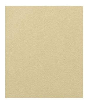 Beacon Hill Silk Satin Chamois Fabric