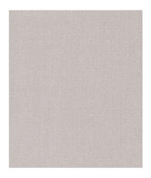 Robert Allen Kerala Dove Gray Fabric