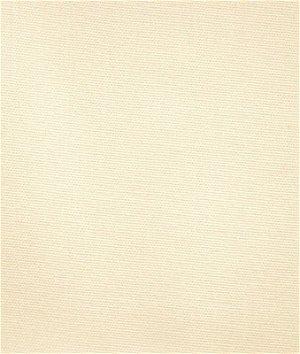 Pindler & Pindler Glasnost Parchment