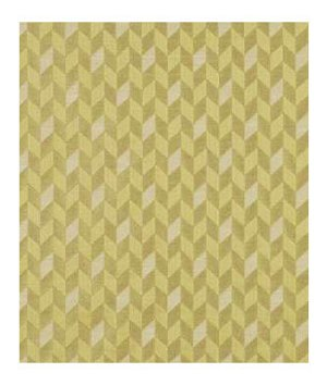 Beacon Hill Dimensional Citrus Fabric