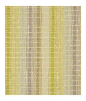 Beacon Hill Stripe Medley Peridot Multi Fabric