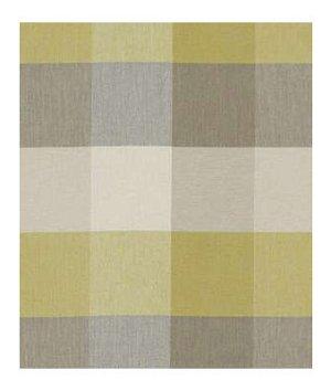 Robert Allen Honey Harbor Chamomile Fabric