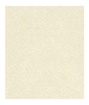 Robert Allen Sensuede II Bone Fabric