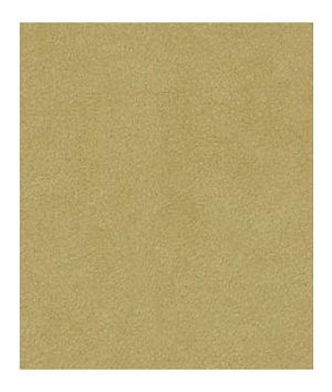 Robert Allen Sensuede II Dune Fabric