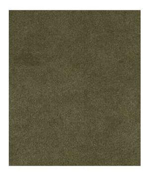Robert Allen Sensuede II Safari Fabric