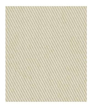 Robert Allen Plain N Simple Sand Dollar Fabric