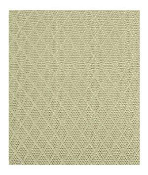 Beacon Hill Romandie Mica Fabric