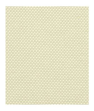 Robert Allen Contract Techno Fashion Snow Fabric