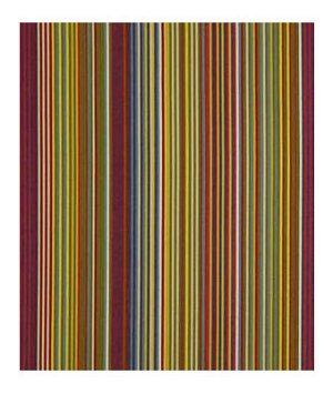 Robert Allen Freestyling Carnivale Fabric