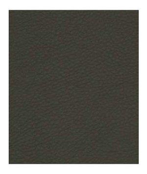 Robert Allen Contract Coltin Charcoal Fabric