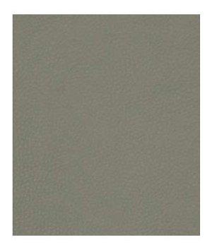 Robert Allen Contract Coltin Elephant Fabric
