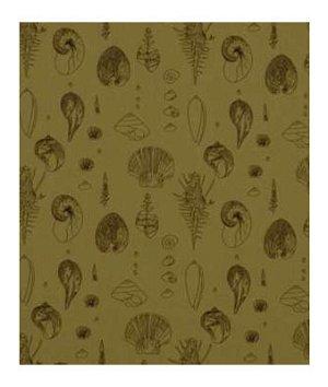 Robert Allen Sea Urchins Teak Fabric