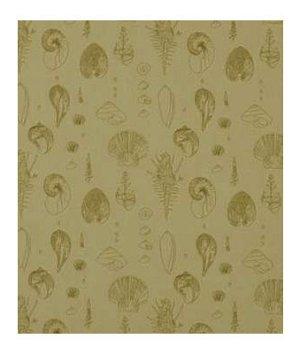 Robert Allen Sea Urchins Sand Fabric