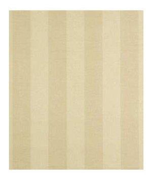 Robert Allen Two Tone Wicker Fabric