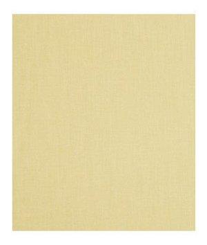 Robert Allen Subtle Mood Amber Fabric