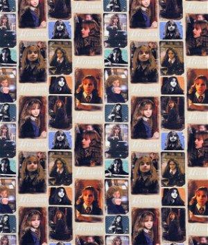 Harry Potter Hermione Multi Fabric