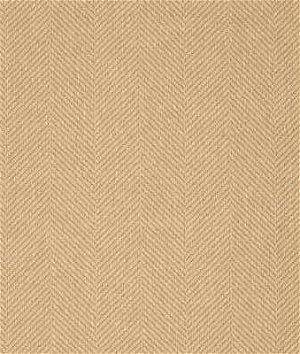 Kravet 28768.16 Fabric