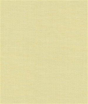 Kravet 29897.414 Sheath Fabric