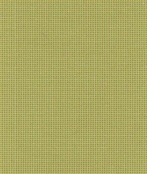 Kravet 30840.3 Dazzled Celery Fabric