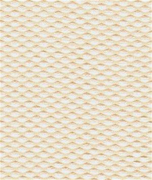 Kravet 31400.101 Fabric