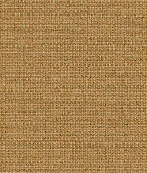 Kravet 31430.4 Fabric