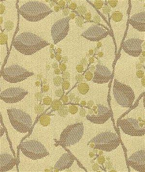 Kravet 31527.416 Vine Drive Lemongrass Fabric
