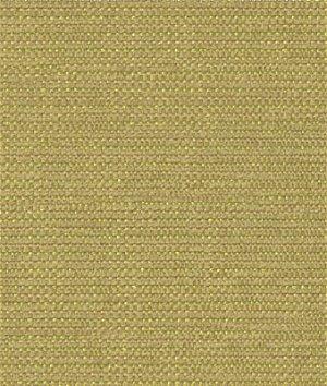 Kravet 31546.3 Beaming Wasabi Fabric