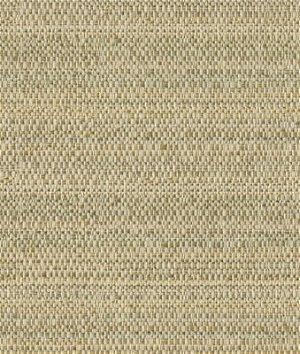 Kravet 31695.116 Fabric