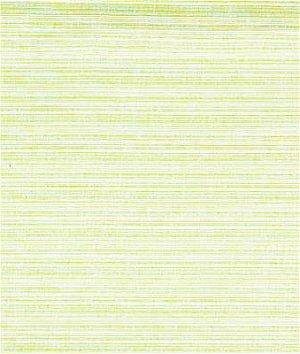 Kravet 31729.312 Nalu Parrot Fabric