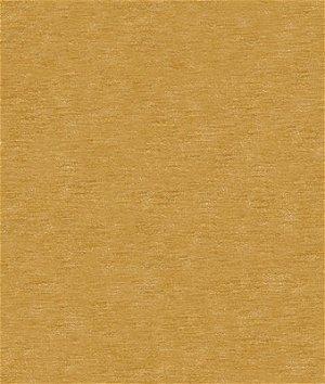 Kravet 31776.4 Fabric