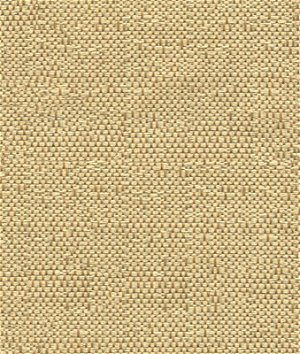 Kravet 31935.16 Ocean Treasures Driftwood Fabric