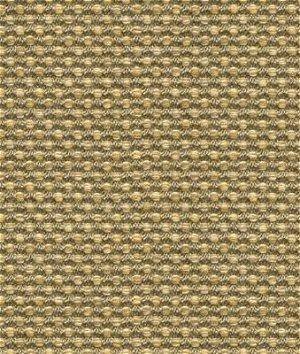 Kravet 31938.6 Polo Texture Dove Fabric
