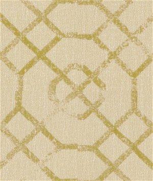 Kravet 31981.316 Joie De Vivre Citron Fabric