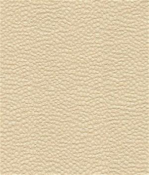 Kravet 32479.1 Nala Shell Fabric