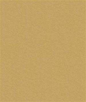 Kravet 32565.1616 Fabric