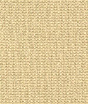 Kravet 32570.16 Fabric