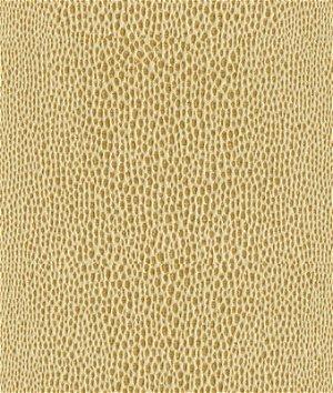 Kravet 32669.4 Fabric
