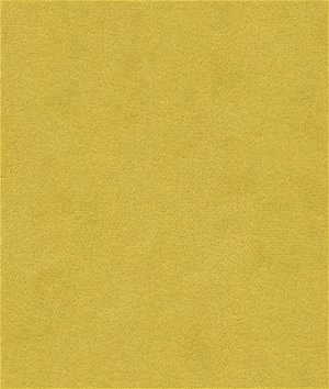 Kravet 32864.123 Delta Endive Fabric