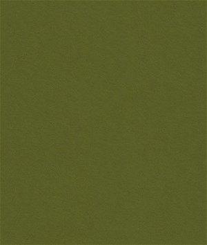 Kravet 32864.130 Delta Loden Fabric
