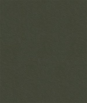 Kravet 32864.2121 Delta Iron Fabric