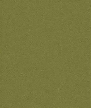 Kravet 32864.3 Delta Sage Fabric