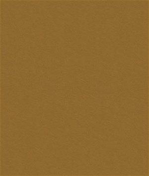 Kravet 32864.414 Delta Toffee Fabric
