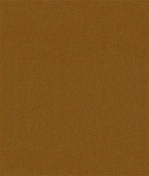 Kravet 32864.616 Delta Spice Fabric