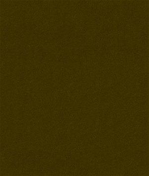 Kravet 32864.6666 Delta Bark Fabric