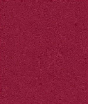 Kravet 32864.97 Delta Punch Fabric