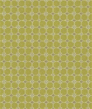 Kravet 32893.30 Fiorina Pear Fabric