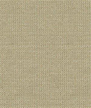 Kravet 32920.11 Wink Silver Moon Fabric