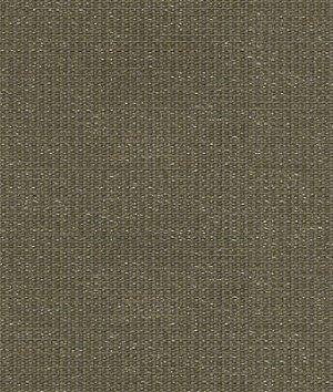 Kravet 32920.21 Wink Mercury Fabric