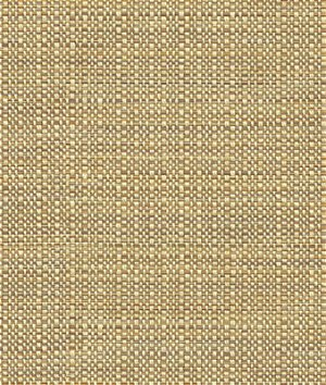 Kravet 32923.616 Elect Moonstone Fabric